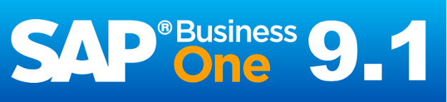SAP_Business_One_9.1