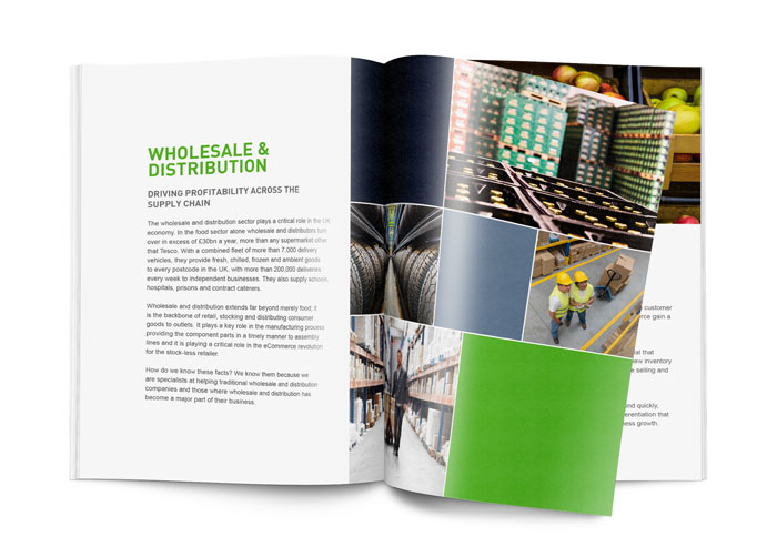 ebook-SAP-business-one-wholesale-distribution