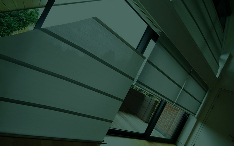 Kaydee Blinds Case Study
