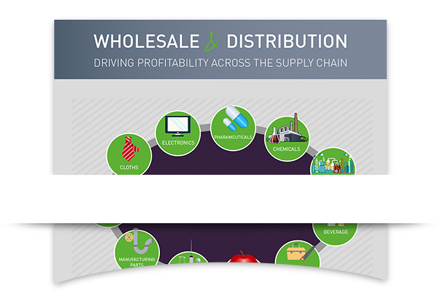 Wholesale & Distribution ERP Infographic